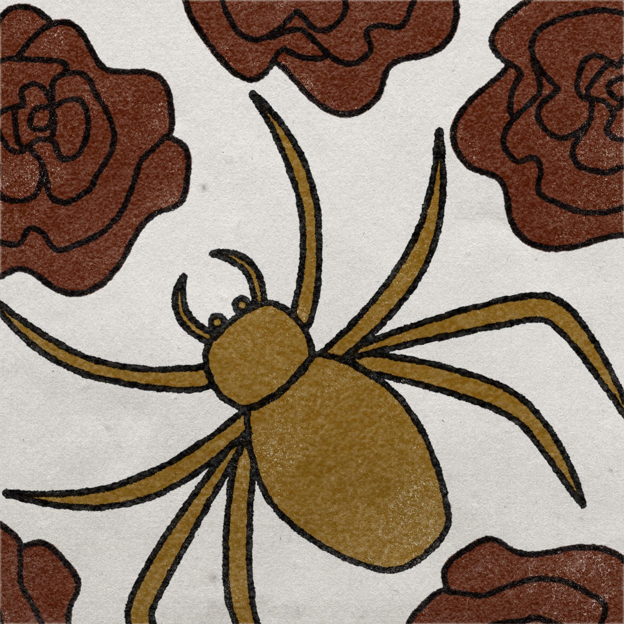 Spider illosArtboard 1 copy 2